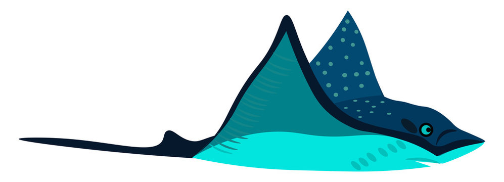 Clipart of a blue-colored stingray bird vector or color illustration