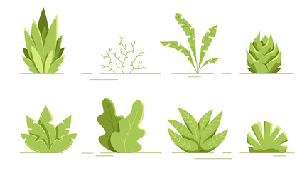 Plants set isolated. Flat style. Leaves, flowers, bushes. Modern trendy minimalistic and simple design. Bright green summer, spring colors. Cartoon style. Floral background. Vector illustration.