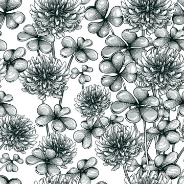 Blooming clover seamless pattern. Vector illustration of clover plant in engraving technique.