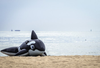 Inflatable orca on the Baltic Sea beach in Swinoujscie city in West Pomerania region of Poland