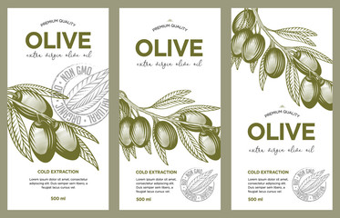 Olive oil label set. Vector hand drawn illustration of olive branches in engraving technique. Templates for olive oil packaging design.