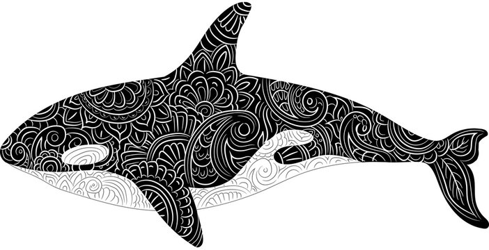 Vector illustration hand drawn of killer whale or orca Ethnic pattern. Meditative coloring. Mandala drawing. Drawing from the hand.
