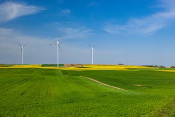 Turbiny wiatrowe na polu z rzepakiem
