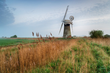 Wall Mural - St Benet's Windmill in Norfolk