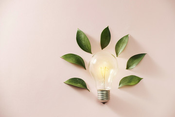 Eco green energy concept bulb, lightbulb leaves on pink background. Wall mural