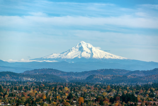 Mt. Hood and Forested Hills