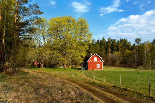 Typical red wooden cottage in Sweden in spring. Smaland, south-east Sweden.