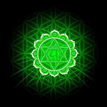 Circle mandala pattern. Anahata chakra vector illustration.