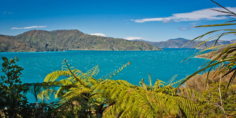 Panoramatic view of ocean from Queen Charlotte track, New Zealand