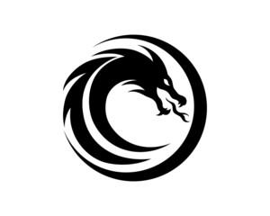 lion, head, power, king, logo, wildlife, leo, wolf, black, illustration, predator, abstract, modern, design, digital, creative