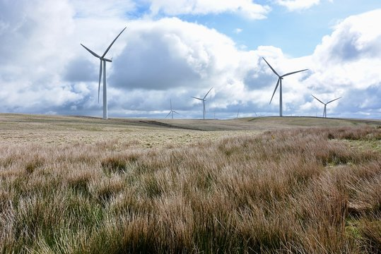 Zero Carbon Wind Farm