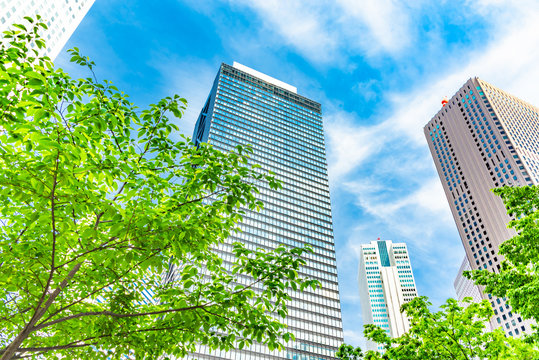 新緑と新宿の高層ビル