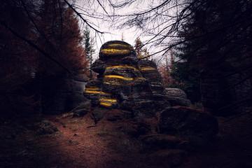 Leuchtende Klippen mitten im dunklen Wald