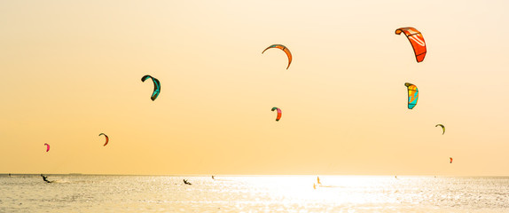 Kite-surfing and a lot of silhouettes of kites in the sky. Holidays on nature. Artistic picture. Beauty world. Panorama