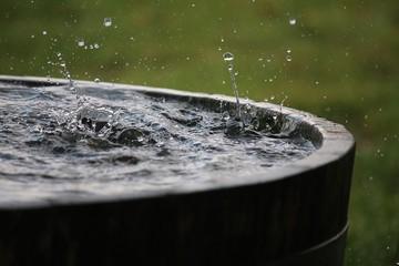 rain is falling in a wooden barrel full of water in the garden