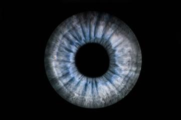 Fond de hotte en verre imprimé Iris Human blue grey eye iris. Pupil in macro on black background