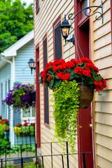 Colorful summertime hanging baskets.