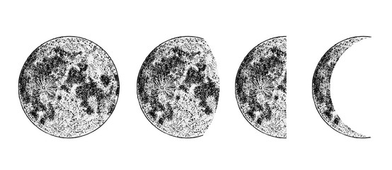 Realistic moon phases image on white background. Hand drawn cycle of moon phases. Vector