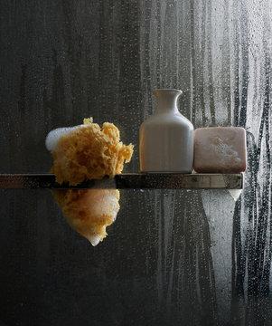 Sponge, bottle and bar of soap