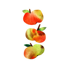 illustration with watercolor apples