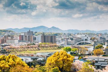 Okayama cityscape from Okayama Castle at spring in Japan Wall mural