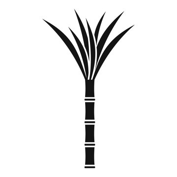 Eco plant cane icon. Simple illustration of eco plant cane vector icon for web design isolated on white background