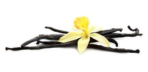 Fotobehang Kruiderij Aromatic vanilla sticks and flower on white background