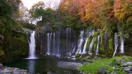 Wall Mural - Footage of Shiraito waterfall in autumn, Japan.
