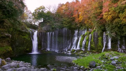 Wall Mural - Footage of Shiraito waterfall in autumn, Japan.