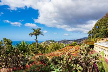 Fototapete - Blick auf einen Garten in Funchal auf der Insel Madeira, Portugal