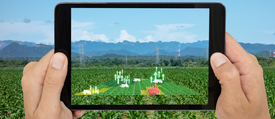 Wall Mural - augmented mixed virtual reality use for various fields like research analysis, safety,rescue, terrain scanning technology, monitoring soil hydration ,yield problem and send data to smart farmer
