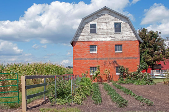 Old Amish Brick Barn in Summer with Garden
