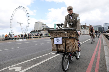 A dog looks out from a basket as his owner rides across Westminster Bridge as he takes part in the annual Tweed Run across London