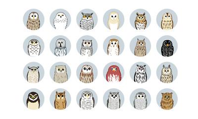 24 フクロウイラスト_24 Owl icons