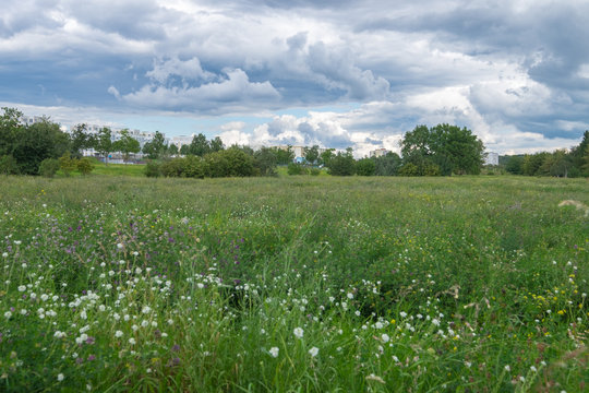 Green meadows on the outskirts of Berlin Marzahn-Hellersdorf