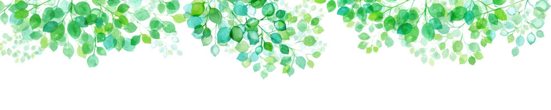新緑。木漏れ日の背景。水彩イラスト。