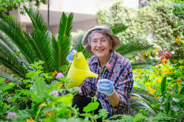 Elderly woman with yellow watering can celebrates life while working in her garden because gardening improves wellbeing.