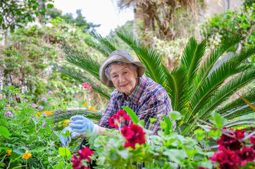 Elderly woman in bucket hat talking to plants in her garden