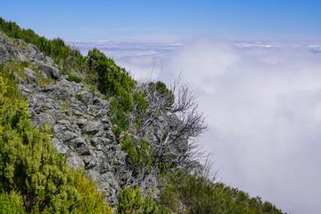 Landscape at Pico de Ruivo in Madeira island in a beautiful sunny day