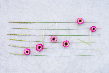 Music notes made of pink strawflowers and wild grass