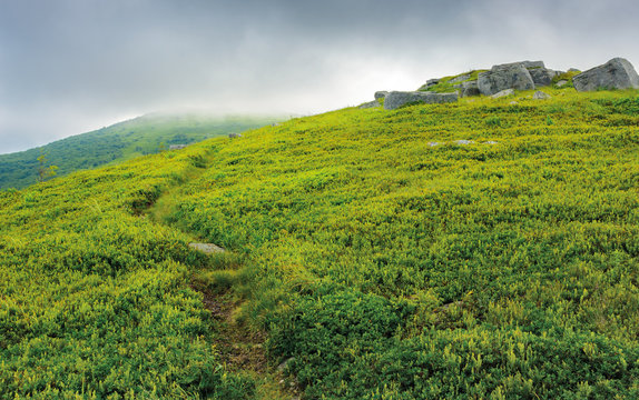 path through grassy meadow to huge boulders. dramatic landscape in mountains on a summer stormy morning