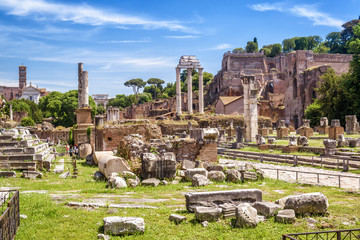 Fototapete - Roman Forum view in summer, Rome, Italy