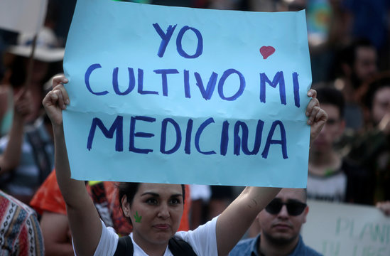 """A woman holds up a banner saying """"I grow my medicine"""" during a demonstration to demand the legalization of the use of marijuana in San Jose"""