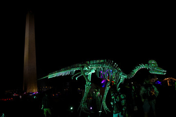A replica of dinosaur skeletons is illuminated as people enjoy a festival event called 'Catharsis on the Mall' in Washington