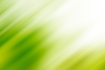 Abstract green motion blur background with bright light. Nature fresh background. Fotoväggar