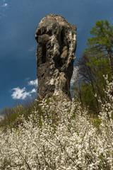 Fototapeta Limestone rock called