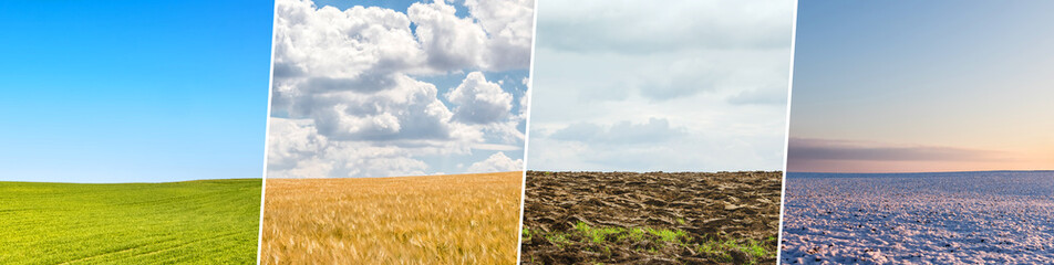 Four season collage from shots with fields ans skies Fotomurales