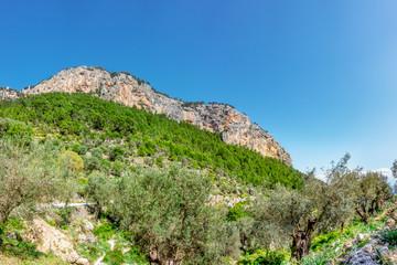 Der wohl beliebteste Berg Mallorcas mit seine Burgruine: Puig d'Alaró