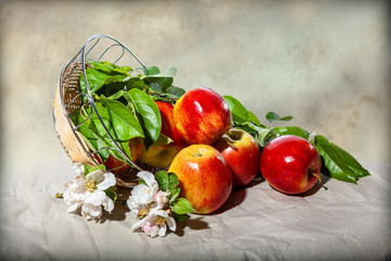 Fresh apples with leaves and flowers