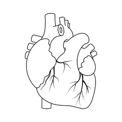 Black outline real heart